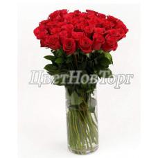 33 розы Красное солнце